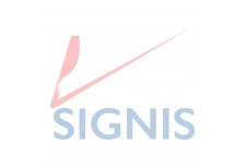 Dia Internacional do Migrante - 2016 um ano turbulento